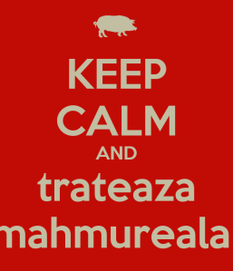 keep-calm-and-trateaza-mahmureala